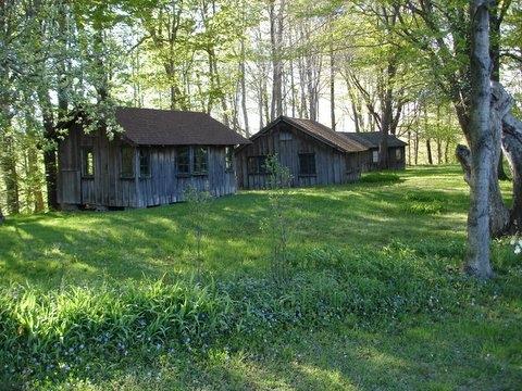 Cabins (3)